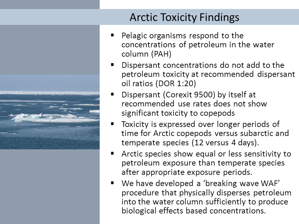Arctic Toxicity Findings  Pelagic organisms respond to the concentrations of petroleum in the water column (PAH)  Dispersant concentrations do not a