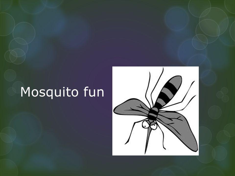 Mosquito fun