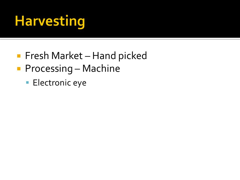  Fresh Market – Hand picked  Processing – Machine  Electronic eye
