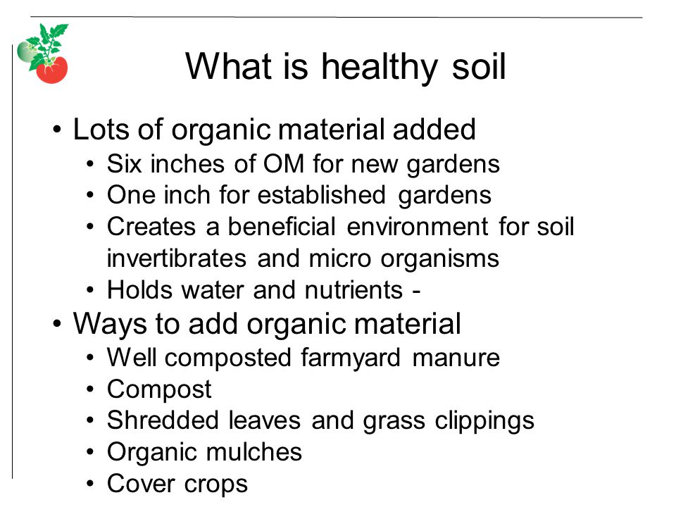 What is healthy soil Lots of organic material added Six inches of OM for new gardens One inch for established gardens Creates a beneficial environment for soil invertibrates and micro organisms Holds water and nutrients - Ways to add organic material Well composted farmyard manure Compost Shredded leaves and grass clippings Organic mulches Cover crops