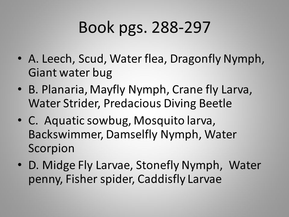 Book pgs. 288-297 A. Leech, Scud, Water flea, Dragonfly Nymph, Giant water bug B. Planaria, Mayfly Nymph, Crane fly Larva, Water Strider, Predacious D