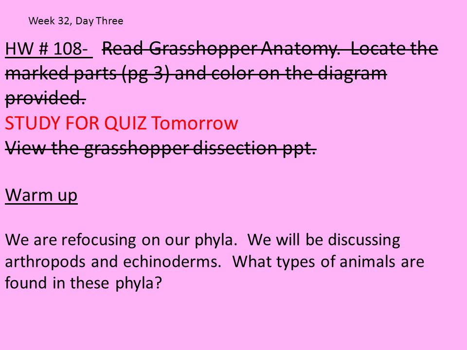 HW # 108- Read Grasshopper Anatomy. Locate the marked parts (pg 3) and color on the diagram provided. STUDY FOR QUIZ Tomorrow View the grasshopper dis