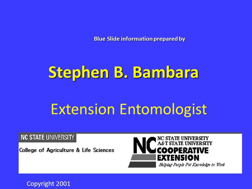 Stephen B. Bambara Extension Entomologist NC STATEUNIVERSITY Blue Slide information prepared by Copyright 2001