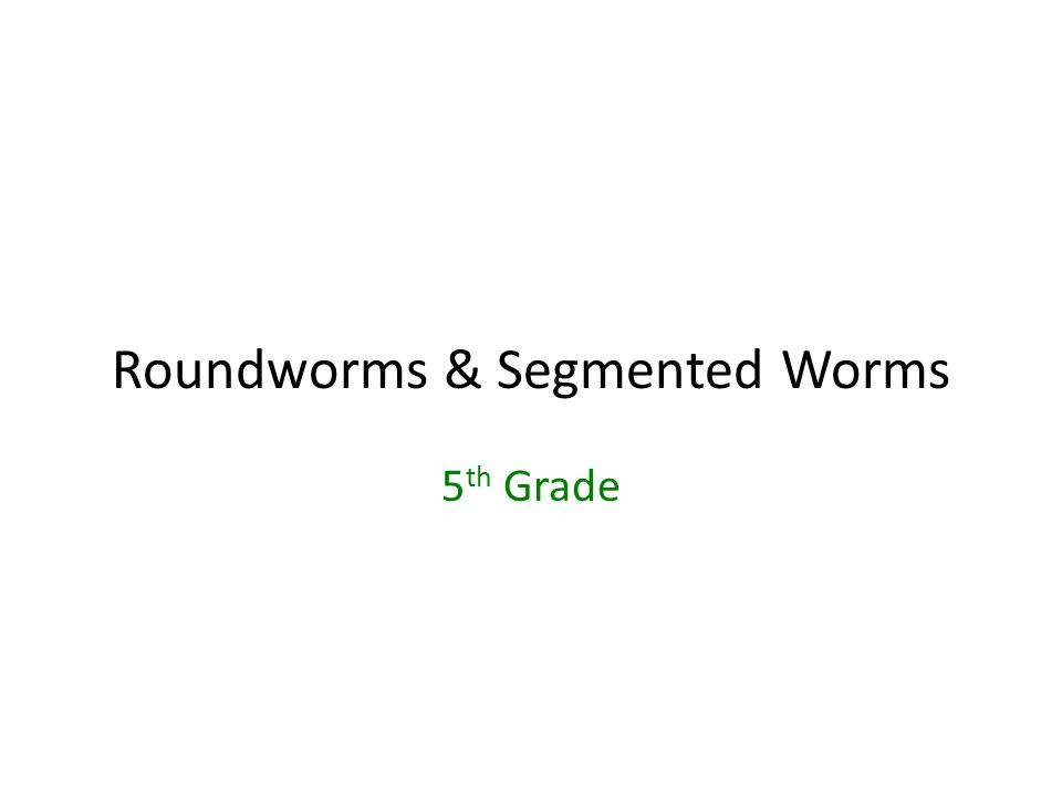 Roundworms & Segmented Worms 5 th Grade