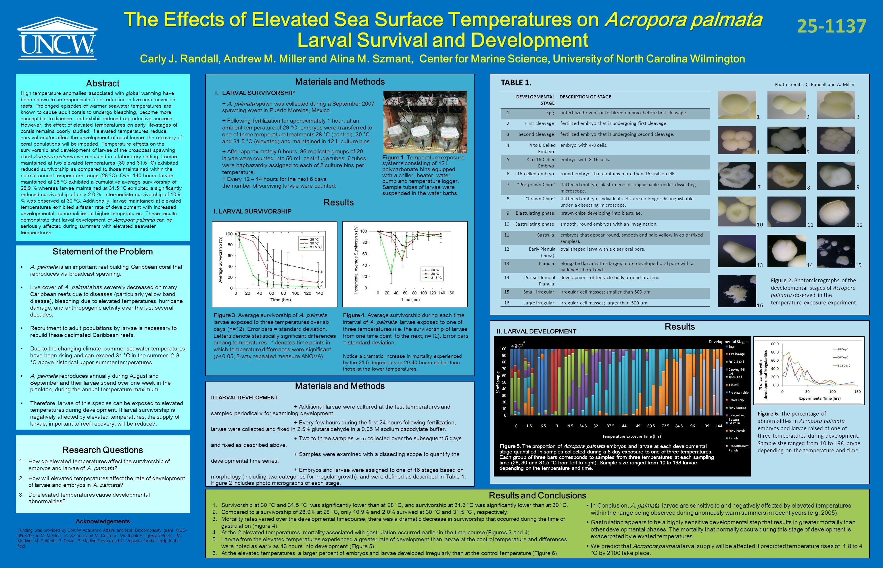 The Effects of Elevated Sea Surface Temperatures on Acropora palmata Larval Survival and Development Carly J.