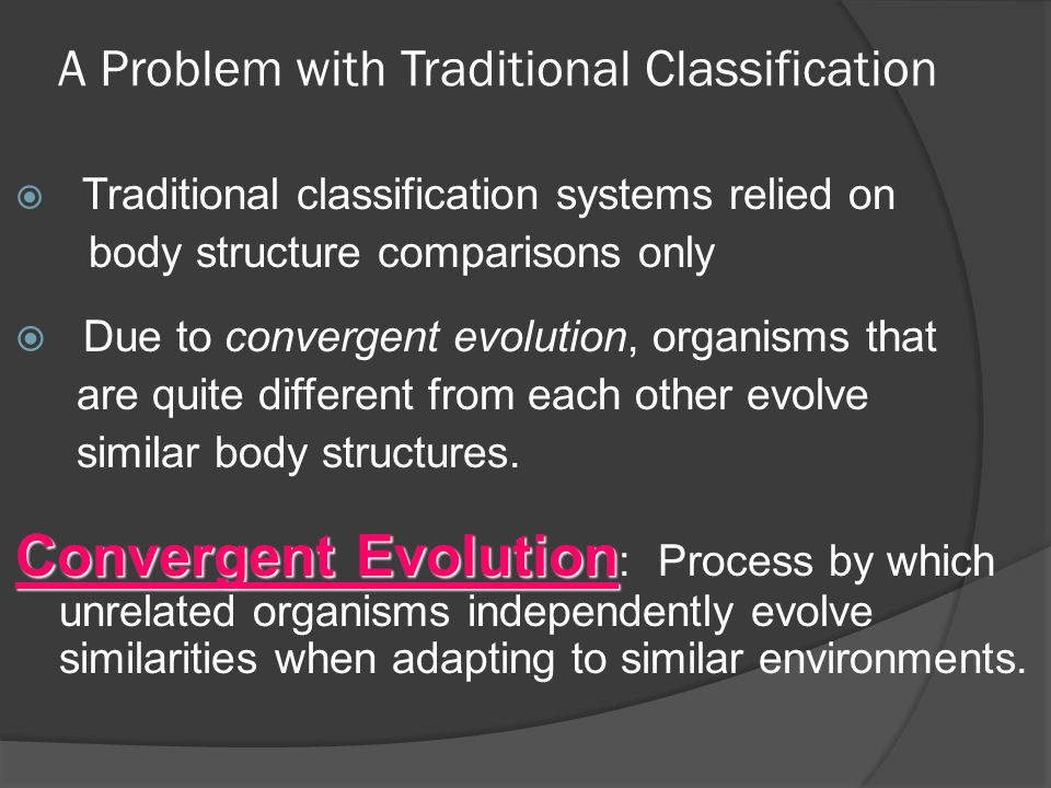 A Problem with Traditional Classification  Traditional classification systems relied on body structure comparisons only  Due to convergent evolution