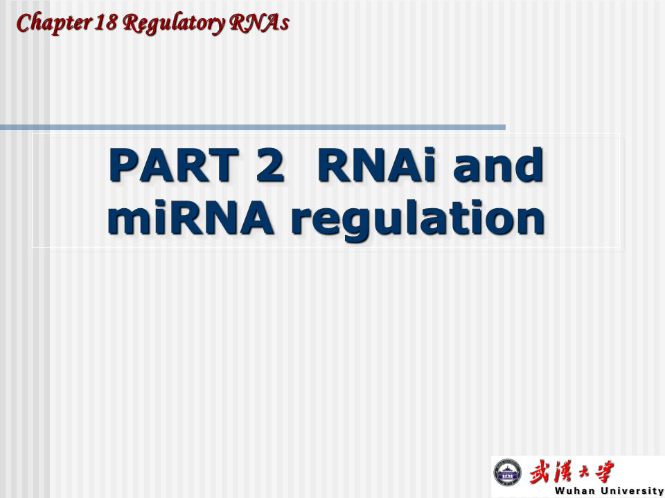 22 PART 2 RNAi and miRNA regulation Chapter 18 Regulatory RNAs