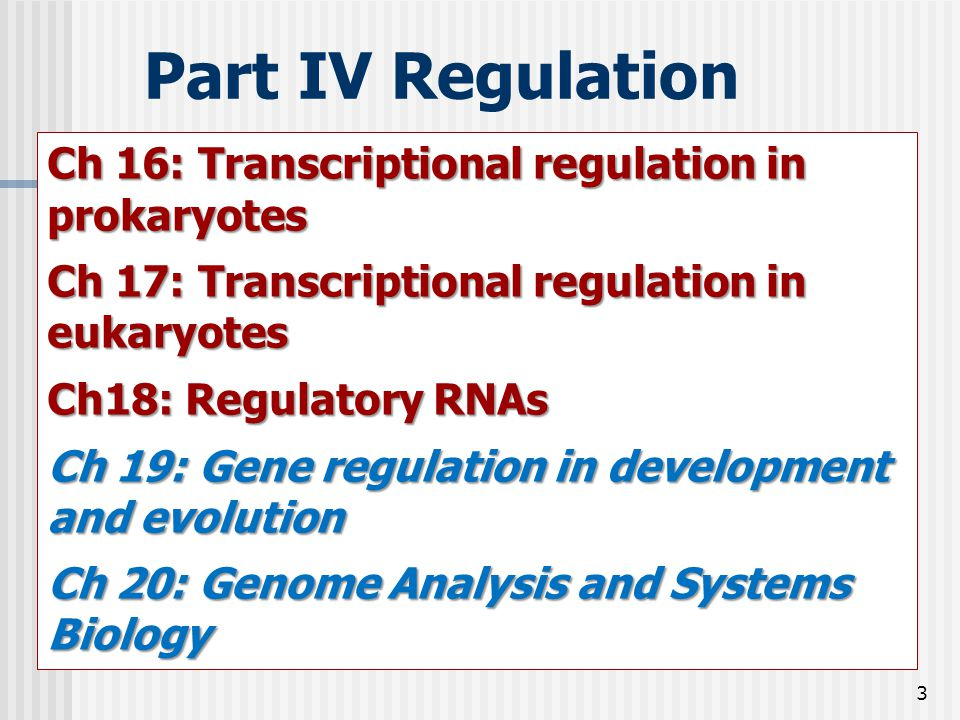 3 Part IV Regulation Ch 16: Transcriptional regulation in prokaryotes Ch 17: Transcriptional regulation in eukaryotes Ch18: Regulatory RNAs Ch 19: Gen