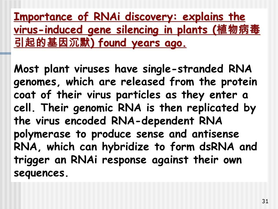 31 Importance of RNAi discovery: explains the virus-induced gene silencing in plants ( 植物病毒 引起的基因沉默 ) found years ago. Most plant viruses have single-