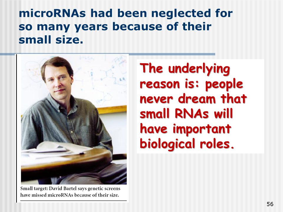 56 microRNAs had been neglected for so many years because of their small size. The underlying reason is: people never dream that small RNAs will have