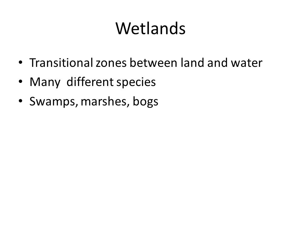 Wetlands Transitional zones between land and water Many different species Swamps, marshes, bogs