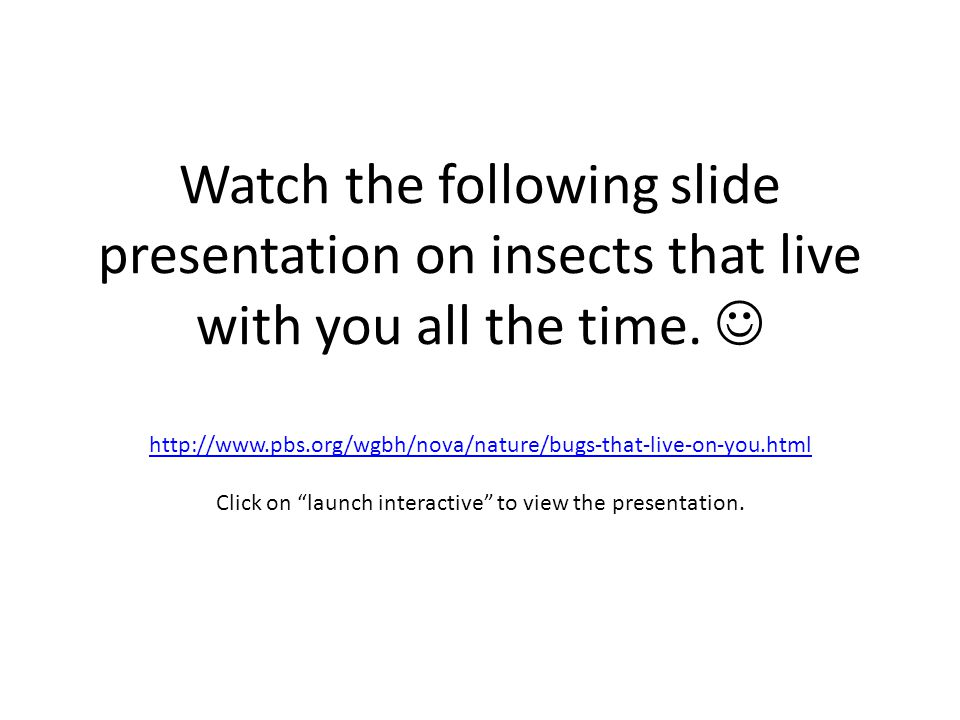 Watch the following slide presentation on insects that live with you all the time. http://www.pbs.org/wgbh/nova/nature/bugs-that-live-on-you.html Clic