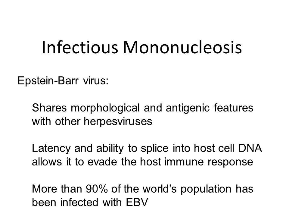 Epstein-Barr virus: Shares morphological and antigenic features with other herpesviruses Latency and ability to splice into host cell DNA allows it to