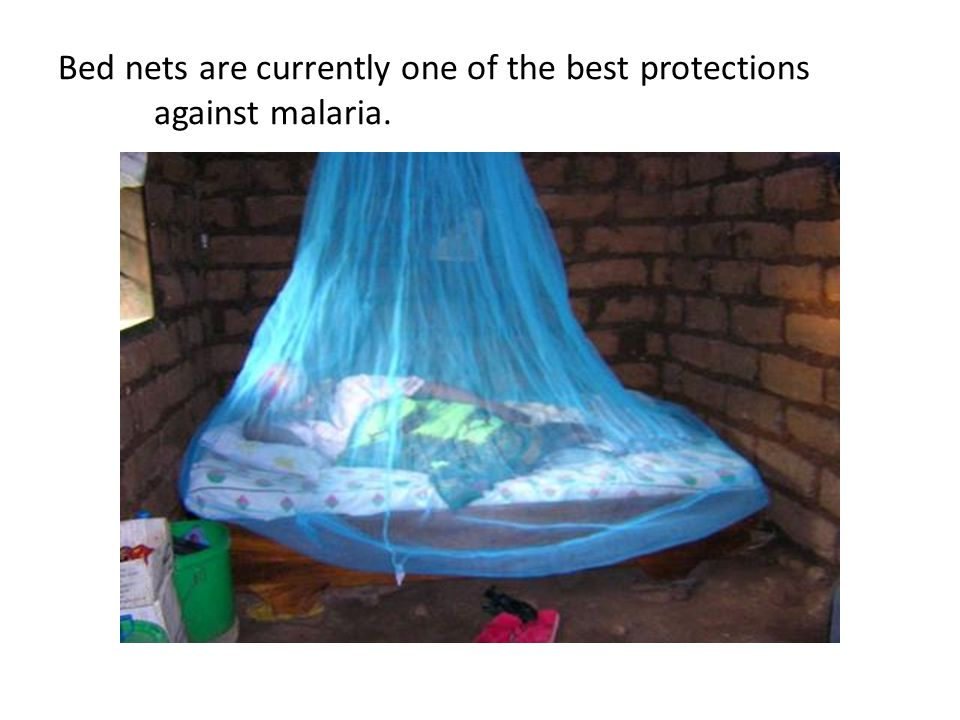 Bed nets are currently one of the best protections against malaria.