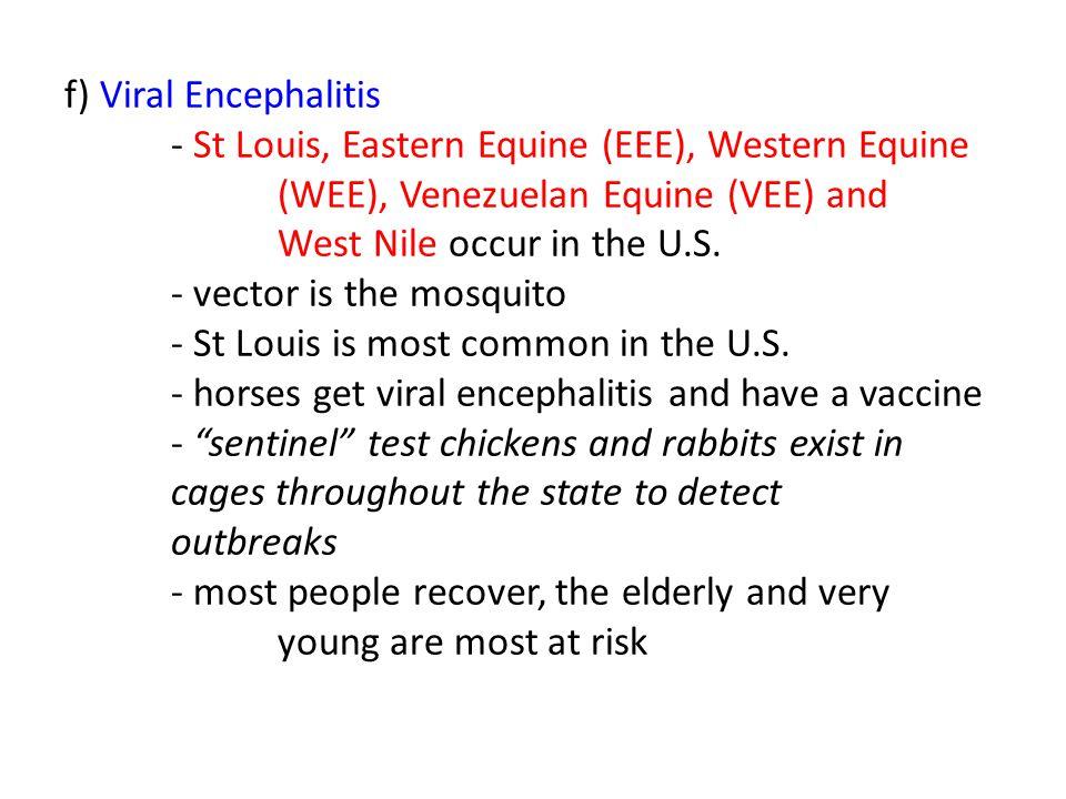 f) Viral Encephalitis - St Louis, Eastern Equine (EEE), Western Equine (WEE), Venezuelan Equine (VEE) and West Nile occur in the U.S. - vector is the
