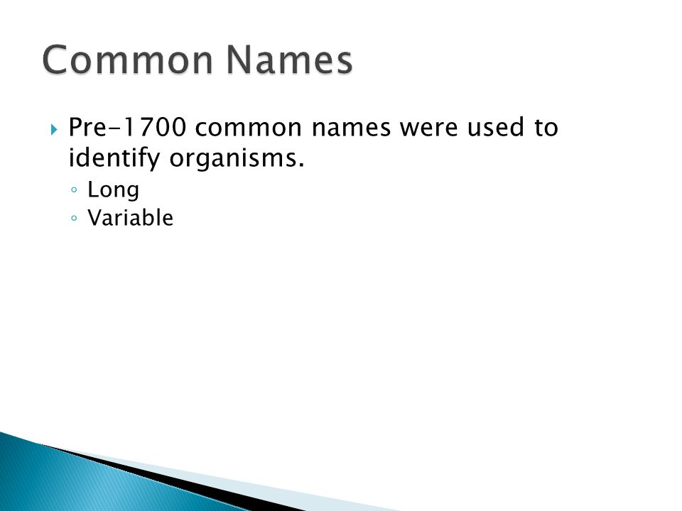  Pre-1700 common names were used to identify organisms. ◦ Long ◦ Variable