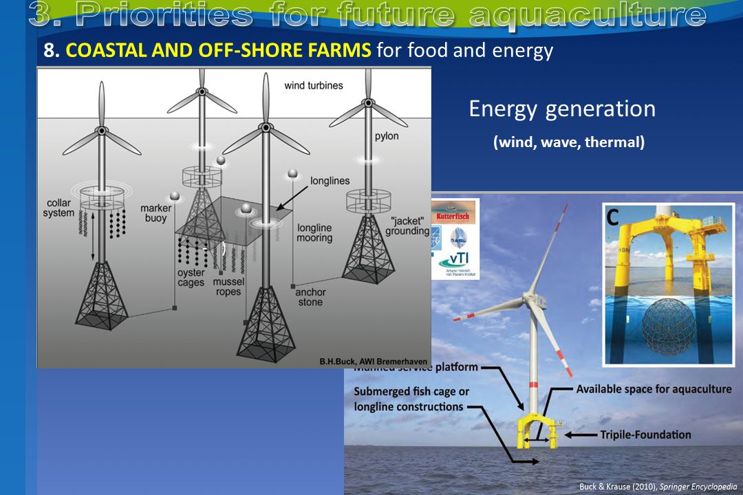 8. COASTAL AND OFF-SHORE FARMS for food and energy -)-) Energy generation (wind, wave, thermal)