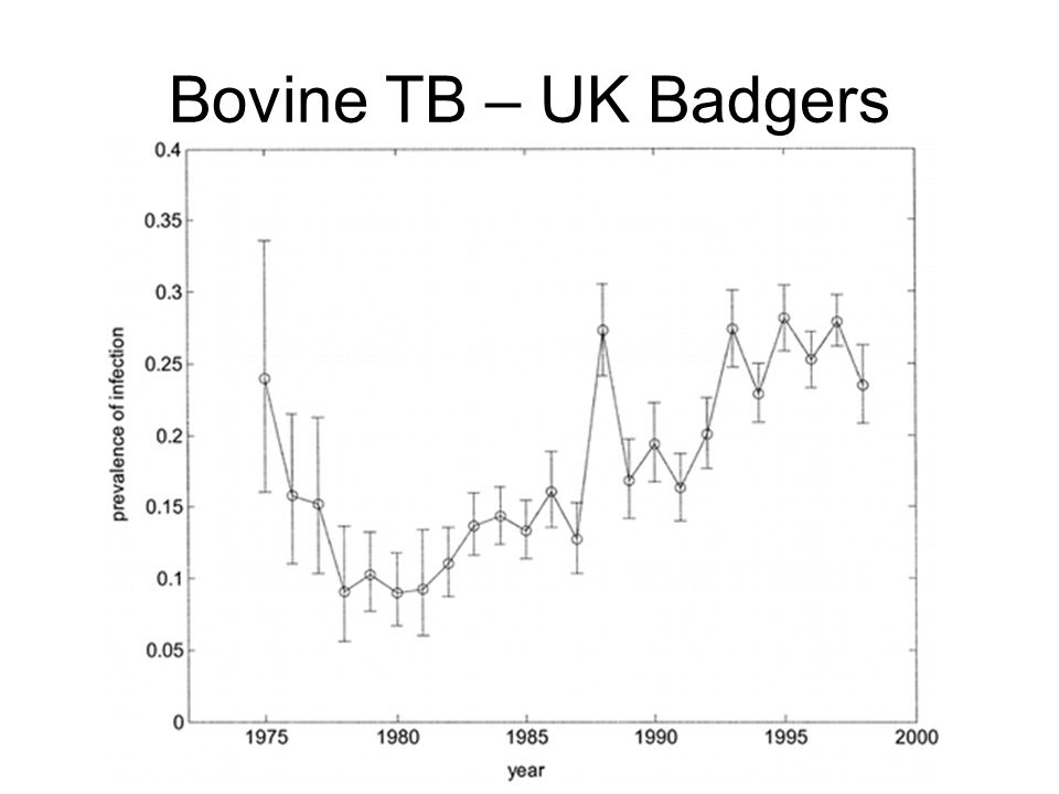Bovine TB – UK Badgers