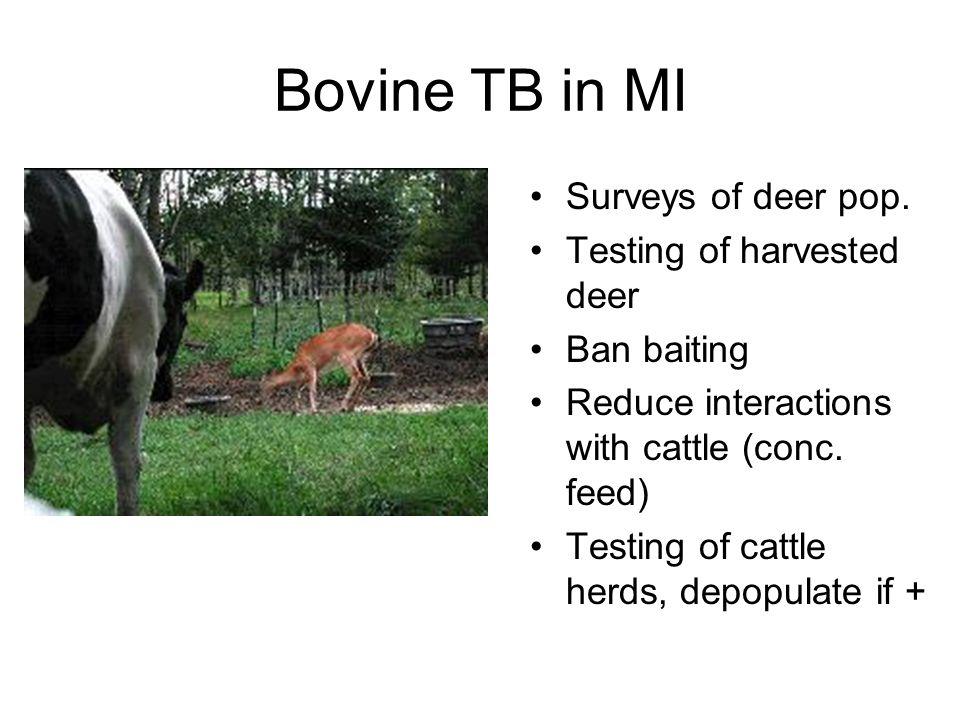 Bovine TB in MI Surveys of deer pop.