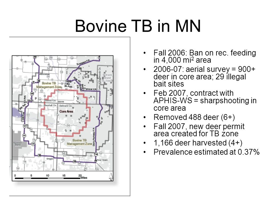 Bovine TB in MN Fall 2006: Ban on rec.