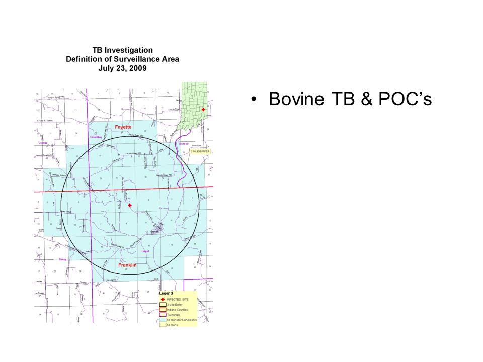 Bovine TB & POC's