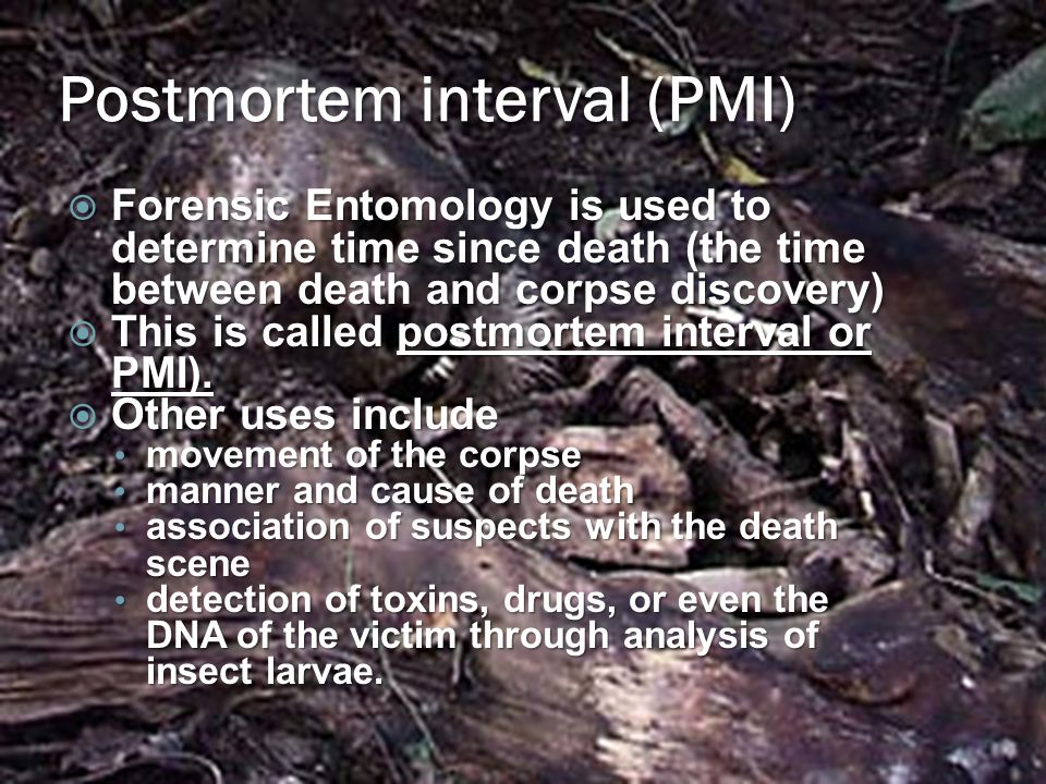 Postmortem interval (PMI)  Forensic Entomology is used to determine time since death (the time between death and corpse discovery)  This is called postmortem interval or PMI).