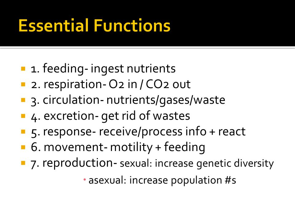  1. feeding- ingest nutrients  2. respiration- O2 in / CO2 out  3.