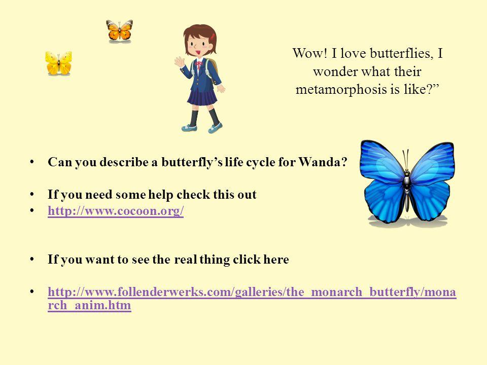 Wow, How beautiful.I wonder if I can remember all that? says Wanda.