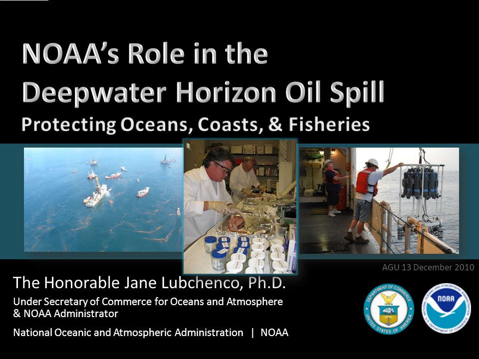 Communicating to Scientists AGU 2010 12 JAG Reports 6/23 Subsea monitoring 6/23 Location & movement of subsurface oil 9/7 Dissolved oxygen Forthcoming: Sub-sea/Sub-surface Detection & Monitoring Other Reports Flow Rate Technical Group Oil Budget Calculator AGU 13 December 2010 12