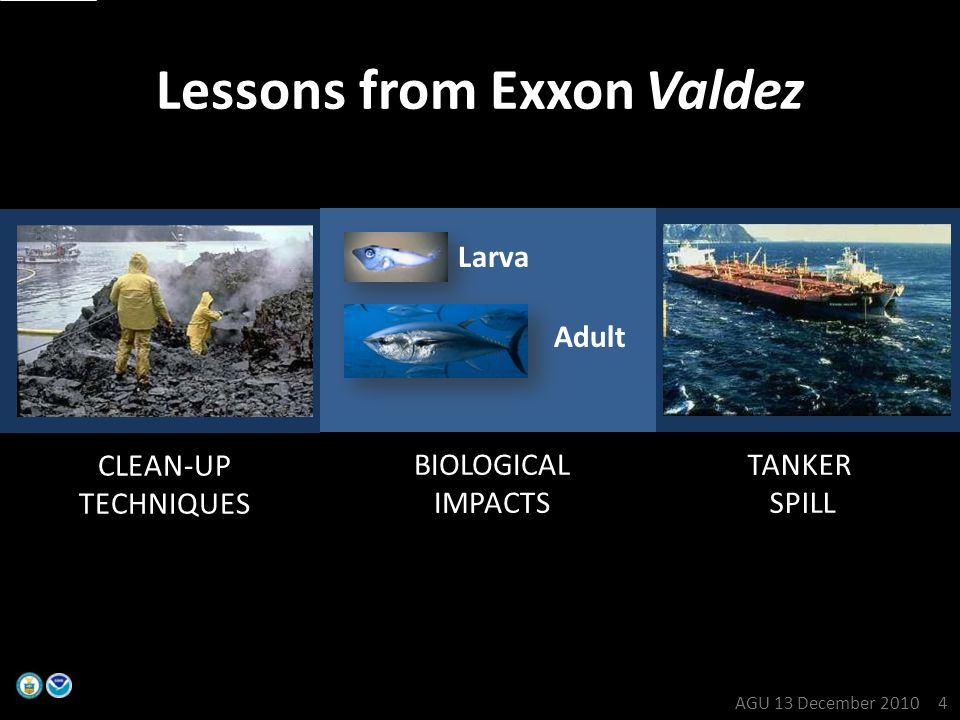 TANKER SPILL CLEAN-UP TECHNIQUES Lessons from Exxon Valdez BIOLOGICAL IMPACTS Larva Adult AGU 13 December 2010 4
