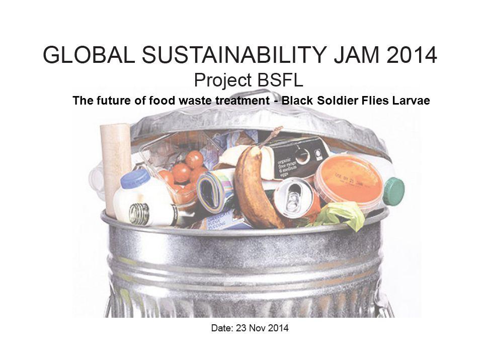 The future of food waste treatment - Black Soldier Flies Larvae