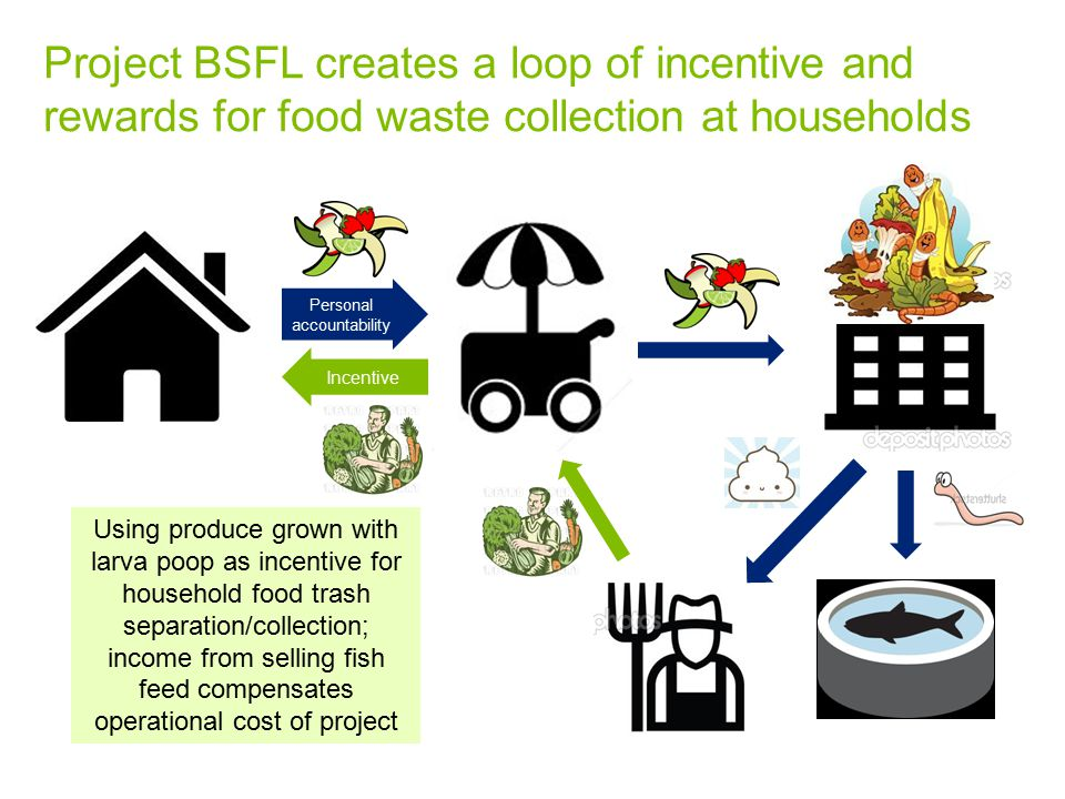 Project BSFL creates a loop of incentive and rewards for food waste collection at households Personal accountability Incentive Using produce grown with larva poop as incentive for household food trash separation/collection; income from selling fish feed compensates operational cost of project
