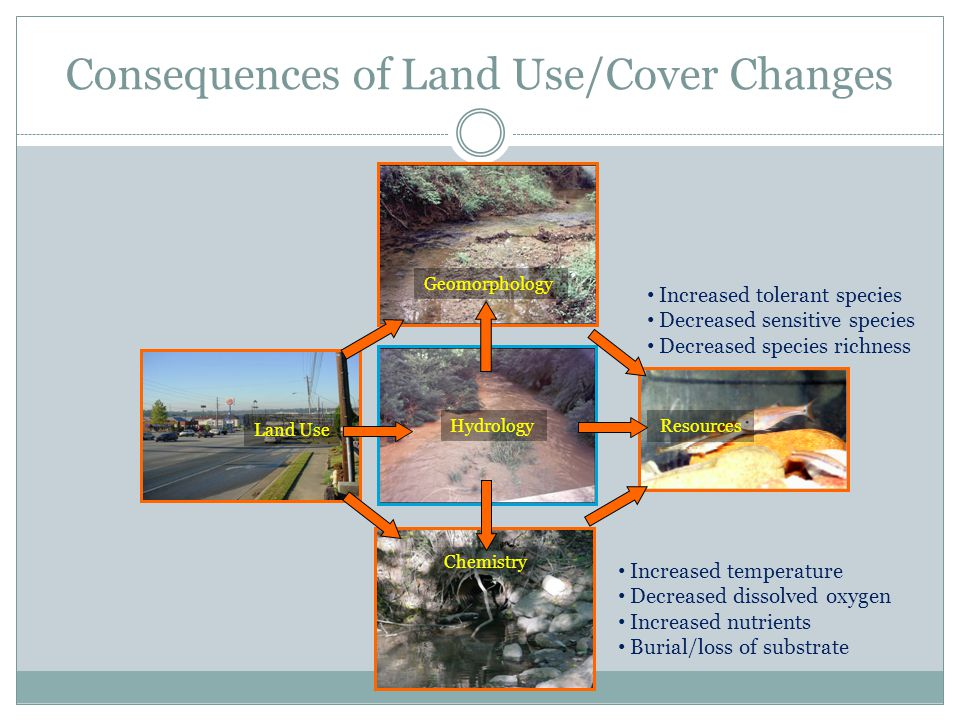 Consequences of Land Use/Cover Changes Land Use Geomorphology Hydrology Chemistry Resources Increased temperature Decreased dissolved oxygen Increased nutrients Burial/loss of substrate Increased tolerant species Decreased sensitive species Decreased species richness