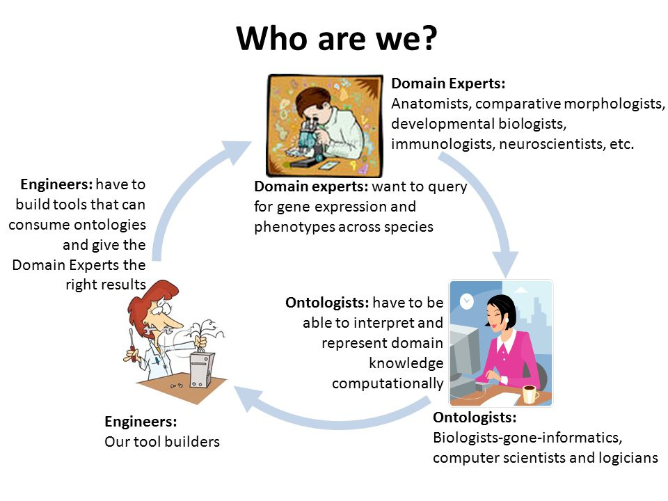 Therefore, we build ontologies that are intelligible to: Domain experts Machines  Comparison of structures across different organisms, scales  Standardization of anatomical vocabulary among and between communities  Integration of anatomical data across databases  Query across large amount of data  Automatic reasoning to infer related classes  Error checking  Annotation consistency We want to enable: Ontologists Engineers