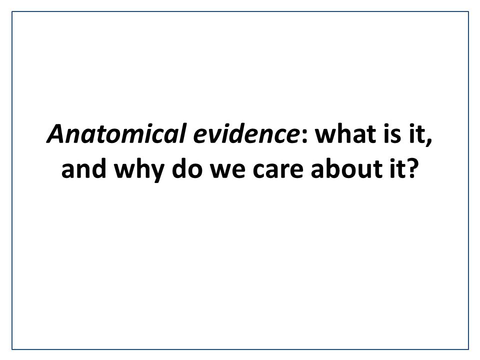 Anatomical evidence: what is it, and why do we care about it