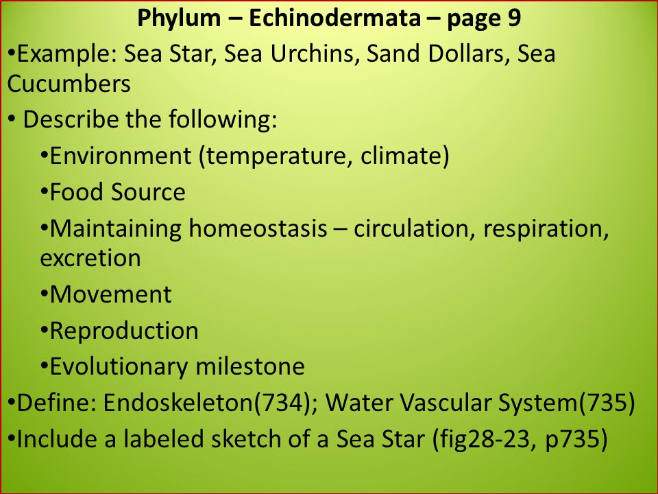 Phylum – Echinodermata – page 9 Example: Sea Star, Sea Urchins, Sand Dollars, Sea Cucumbers Describe the following: Environment (temperature, climate)
