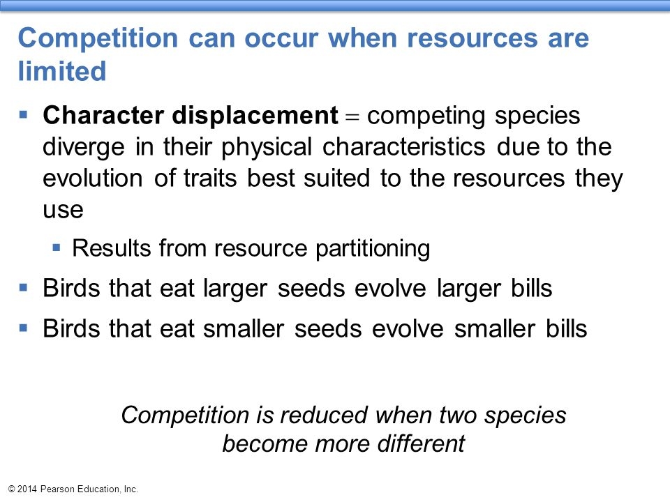 Competition can occur when resources are limited  Character displacement  competing species diverge in their physical characteristics due to the evo