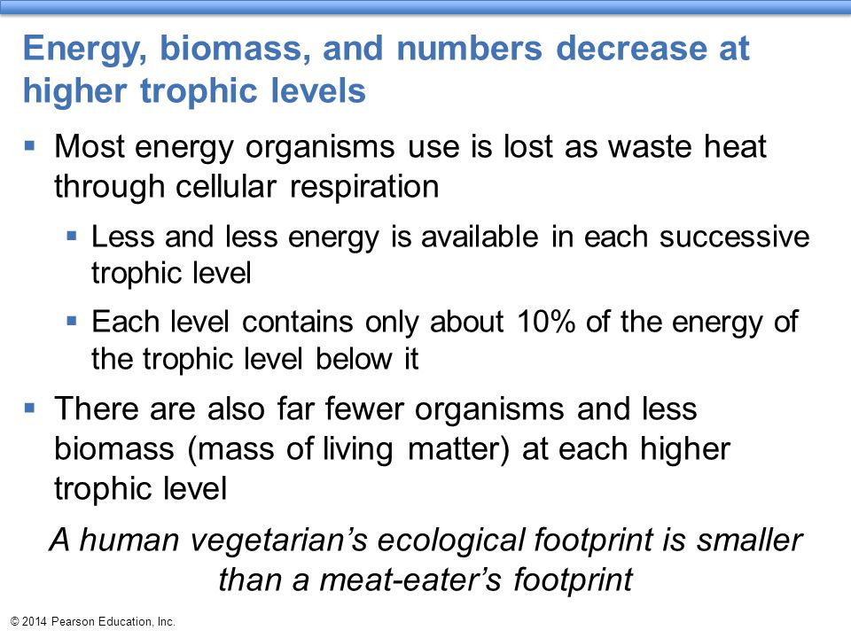 © 2014 Pearson Education, Inc. Energy, biomass, and numbers decrease at higher trophic levels  Most energy organisms use is lost as waste heat throug
