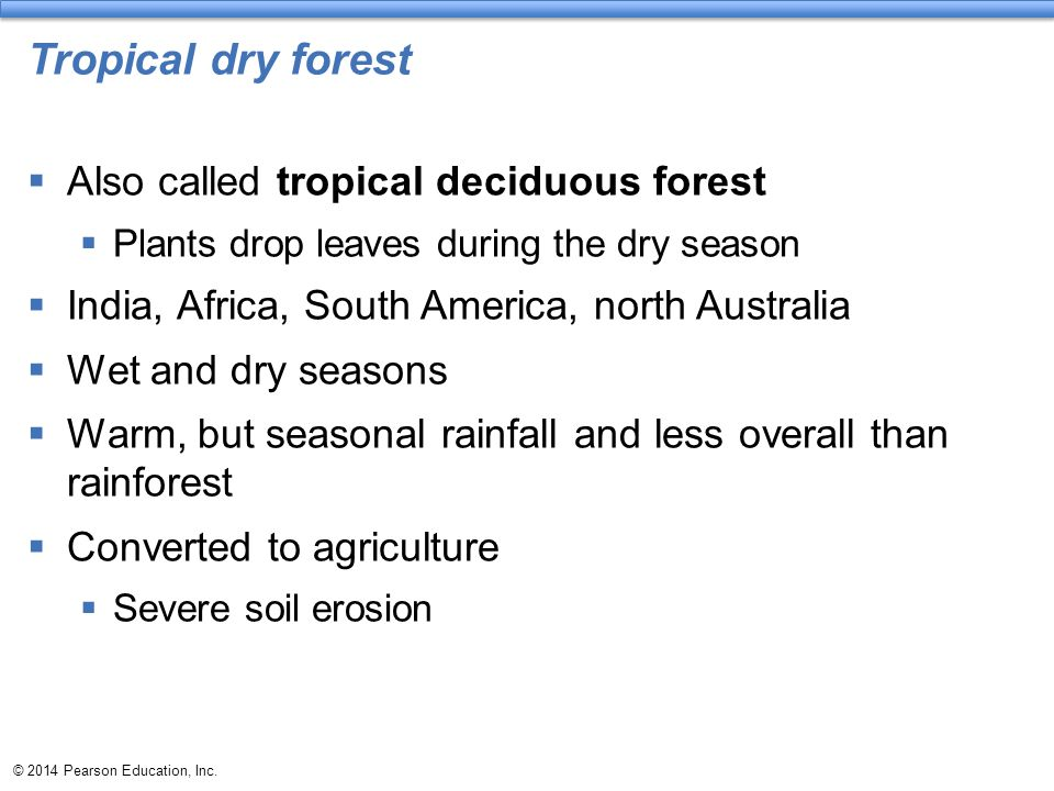 Tropical dry forest  Also called tropical deciduous forest  Plants drop leaves during the dry season  India, Africa, South America, north Australia