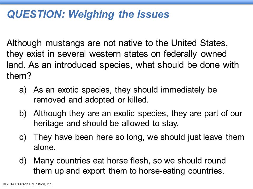 © 2014 Pearson Education, Inc. QUESTION: Weighing the Issues Although mustangs are not native to the United States, they exist in several western stat