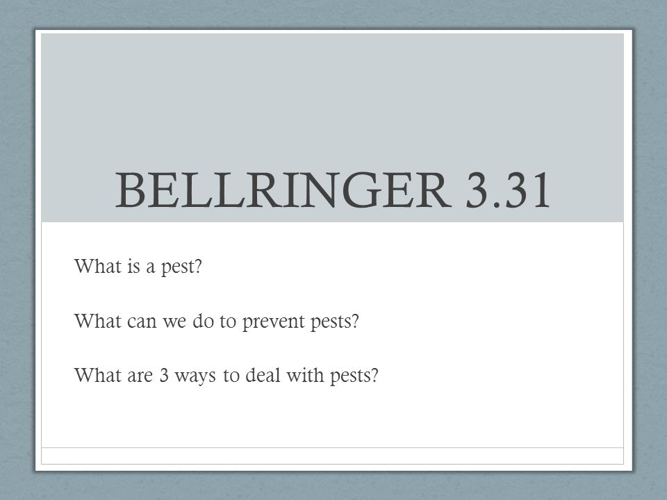 BELLRINGER 3.31 What is a pest? What can we do to prevent pests? What are 3 ways to deal with pests?