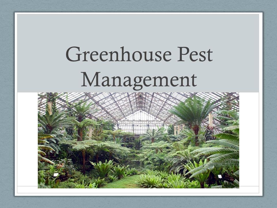 Greenhouse Pest Management