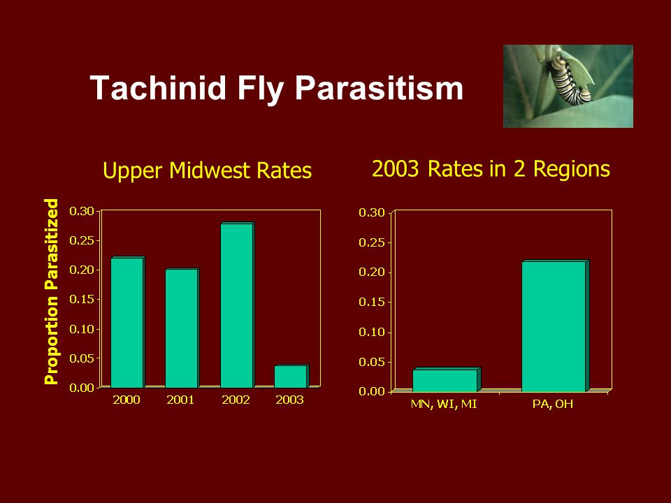 Upper Midwest Rates 2003 Rates in 2 Regions Proportion Parasitized