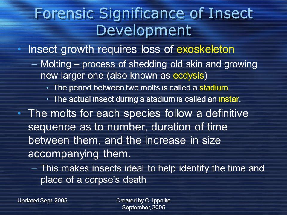 Updated Sept. 2005Created by C. Ippolito September, 2005 Types of Insect Development Types of Insect Development Gradual (hemimetabolous) M MM Metamor