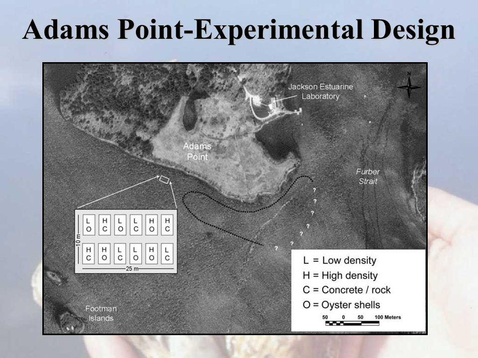 Adams Point-Experimental Design