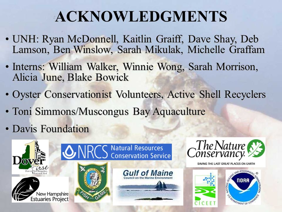 ACKNOWLEDGMENTS UNH: Ryan McDonnell, Kaitlin Graiff, Dave Shay, Deb Lamson, Ben Winslow, Sarah Mikulak, Michelle GraffamUNH: Ryan McDonnell, Kaitlin Graiff, Dave Shay, Deb Lamson, Ben Winslow, Sarah Mikulak, Michelle Graffam Interns: William Walker, Winnie Wong, Sarah Morrison, Alicia June, Blake BowickInterns: William Walker, Winnie Wong, Sarah Morrison, Alicia June, Blake Bowick Oyster Conservationist Volunteers, Active Shell RecyclersOyster Conservationist Volunteers, Active Shell Recyclers Toni Simmons/Muscongus Bay AquacultureToni Simmons/Muscongus Bay Aquaculture Davis FoundationDavis Foundation