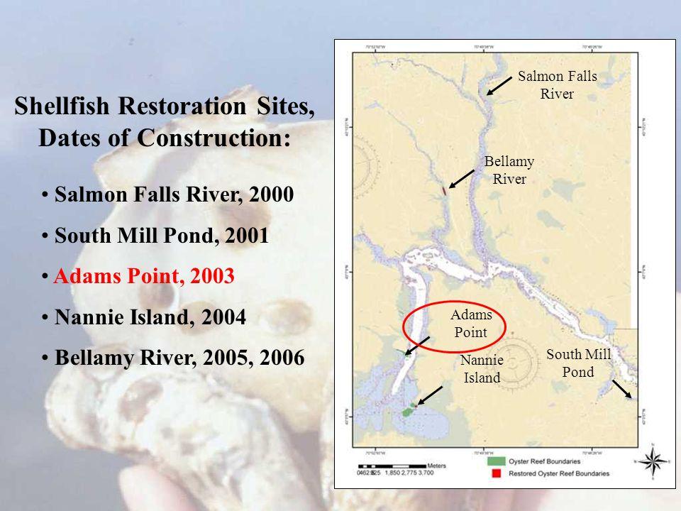 Shellfish Restoration Sites, Dates of Construction: Salmon Falls River, 2000 South Mill Pond, 2001 Adams Point, 2003 Nannie Island, 2004 Bellamy River