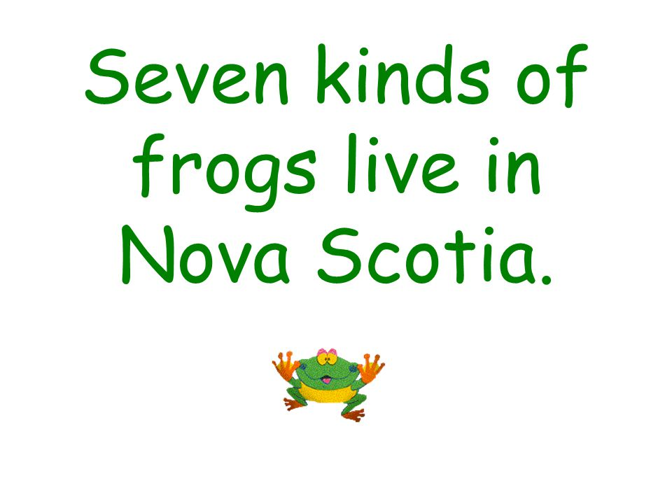 Seven kinds of frogs live in Nova Scotia.