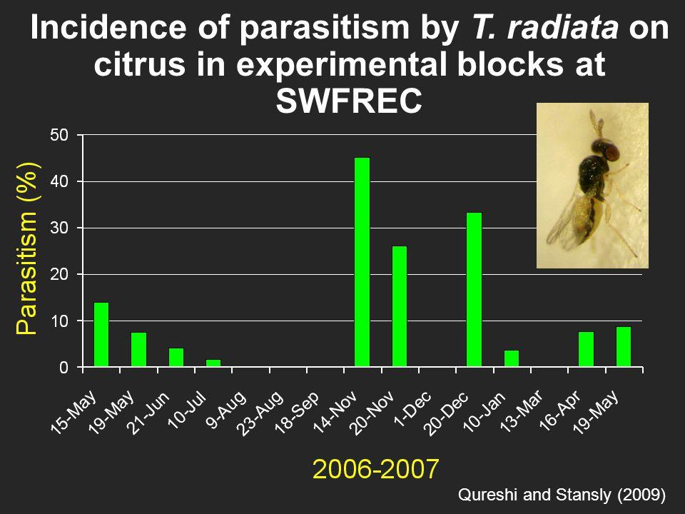 2004 - 05 Incidence of parasitism by T.radiata on citrus in Isabela, Puerto Rico Pluke et.