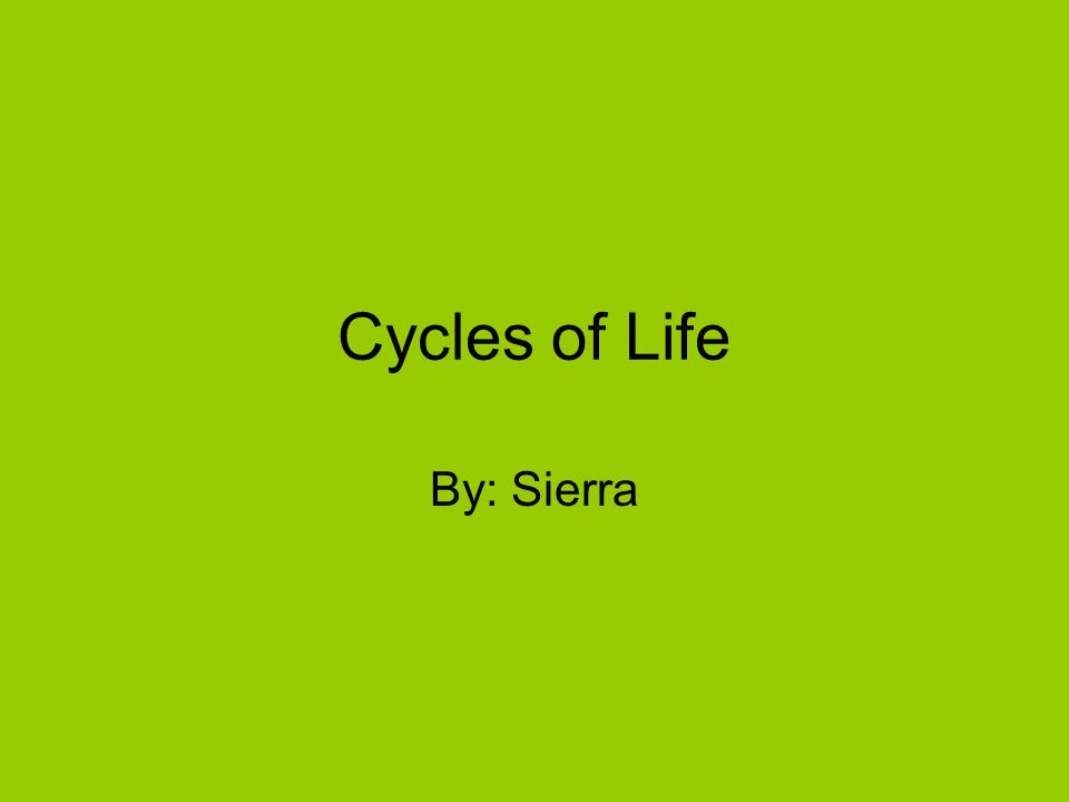 Cycles of Life By: Sierra